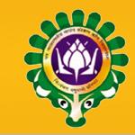 dbskkv_logo