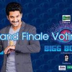 biggboss-2-voting