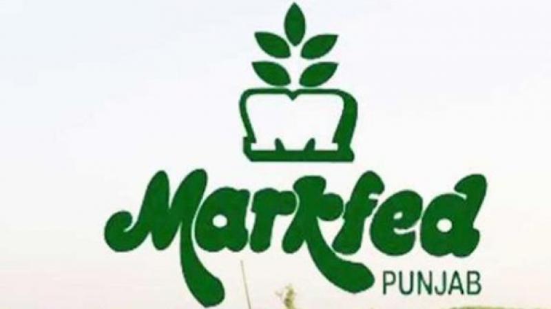 markfed