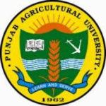 PAU Ludhiana recruitment
